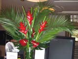Tropical Office flower display in reception area of RIBA